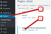 WooCommerce plugin for Magic Zoom Plus settings page