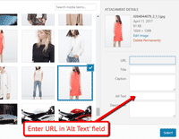 Add a url to your carousel images using the WordPress Alt Text field