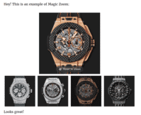 Magic Zoom works instantly on your WordPress page or post